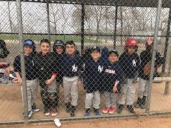 yankees-2018-dhaa-little-league